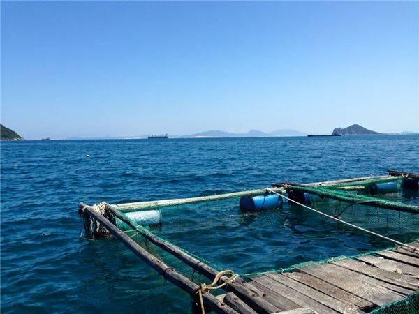 Không phải ngẫu nhiên mà Tổ chức Du lịch thế giới đã đánh giá Đại Lãnh, Vũng Rô (nằm trong cụm du lịch liên hoàn Văn Phong - Đại Lãnh - Vũng Rô) là một trong những thắng cảnh nghỉ ngơi đẹp nhất khu vực châu Á, vượt xa biển Phuket (Thái Lan) và có thể so sánh với những thắng cảnh tuyệt vời khác trên thế giới. Ảnh: Pan Xê
