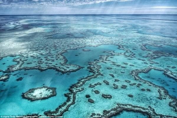 Vùng nước trong xanh tại Rạn san hô ngầm lớn nhất thế giới Great Barrier Reef (Australia). Ảnh: Ingrid Teda/National Geographic.