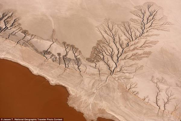 Vẻ đẹp của hồ Koehn thuộc ốc đảo sa mạc Mojave, bang California (Mỹ). Ảnh: Jaseen T./National Geographic.