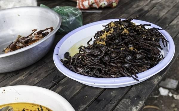 <strong>Nhện đen Tarantula: </strong>Vẻ ngoài đáng sợ có thể khiến nhiều người phải hét lên, nhưng ở Campuchia và Thái Lan, đây lại là một đặc sản khoái khẩu. Nhện được bỏ răng nanh sau đó rán hoặc nướng. Món ăn này rất giàu protein nhưng không phải ai cũng đủ can đảm thưởng thức.