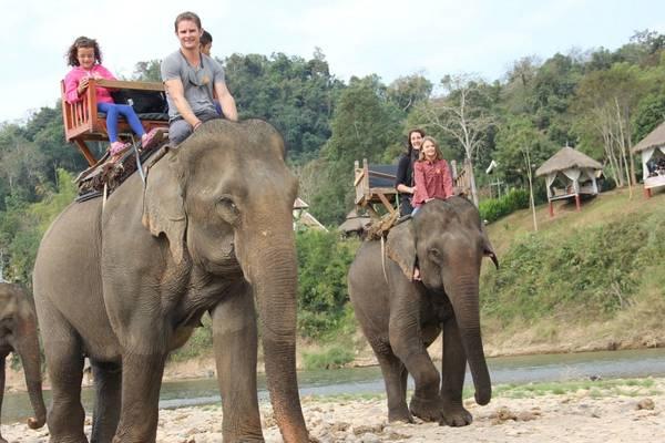 Cõi voi là trải nghiệm du khách không thể bỏ qua khi đến Luang Prabang. Ảnh: wtoutiao.com