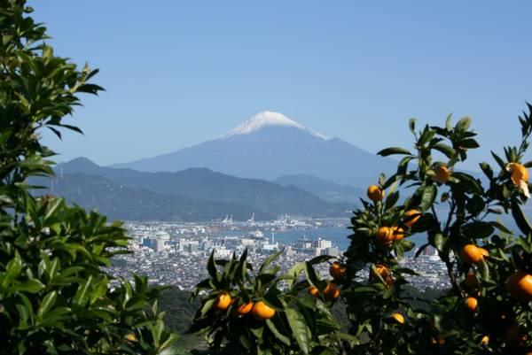Thành phố Shizuoka là điểm đến sở hữu vẻ đẹp đa dạng. Ảnh: shizuokatourism.com