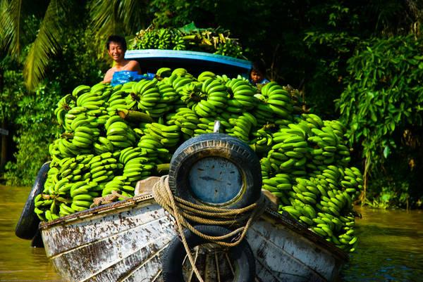 Những thuyền chở đầy cây trái là điều không khó để nhìn thấy ở đây. Ảnh: ST