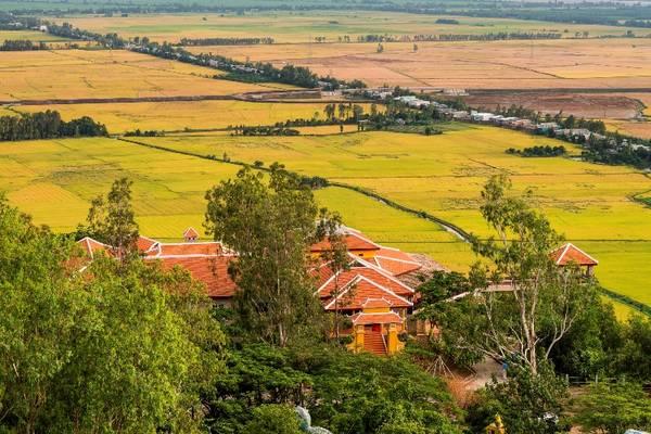 Từ núi Sam, du khách sẽ phóng tầm mắt, ngắm nhìn những đồng lúa chín vàng tuyệt đẹp. Ảnh: victoriahotels.asia