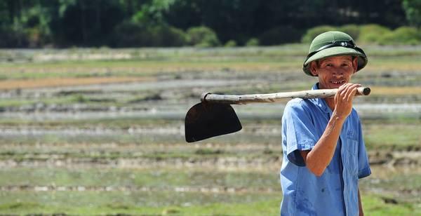 Bác nông dân miền Trung với chiếc nón cối cụ Hồ là một hình ảnh vô cùng quen thuộc của người dân Việt Nam nói chung và miền Trung nói riêng.