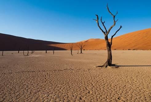 """Công viên quốc gia sa mạc Sossusvlei Namib, Namibia  Tọa lạc tại Namib Naukluft, công viên quốc gia sa mạc Sossusvlei Namib là một hồ muối và đất sét lớn, được che chắn bởi những đụn cát đỏ khổng lồ, một hình ảnh phổ biến của Namibia. """"Big Daddy"""" là đụn cát đỏ lớn nhất có chiều cao hơn 300 m. Một trong những hoạt động hấp dẫn nhất là trèo lên đỉnh Big Daddy."""