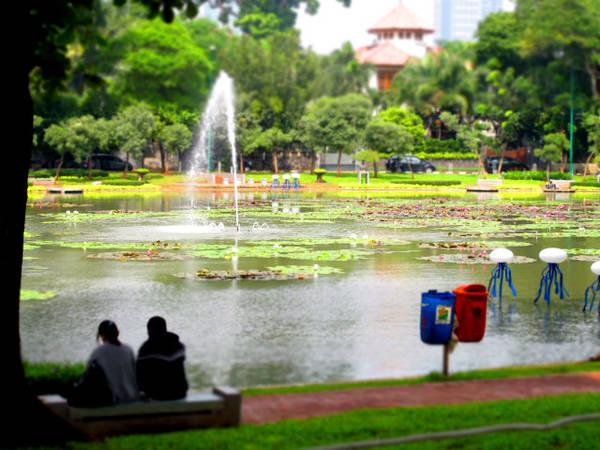 Mặc dù có rất nhiều tòa nhà chọc trời nhưng Jakarta lại được gọi thành phố của công viên hoặc thành phố xanh bởi diện tích cây xanh bao phủ lên đến gần 70%. Ảnh: Discoveryourindonesia.com