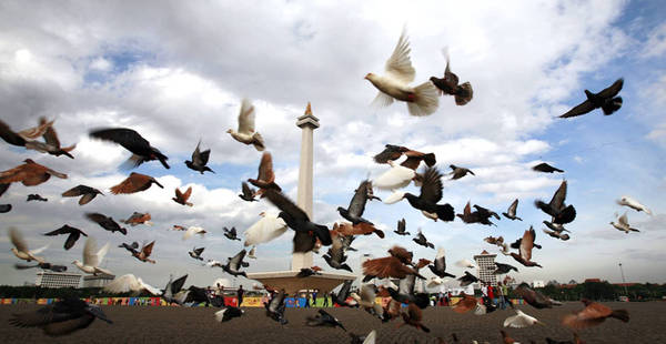 Thời điểm đẹp nhất để thăm tượng đài là vào lúc hoàng hôn. Ảnh: budaljakarta.com