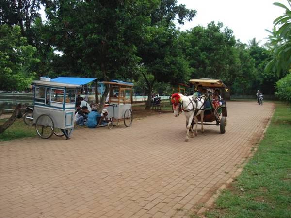 Du khách có thể ngồi xe ngựa khám phá ngôi làng. Ảnh: Kotawisataindonesia.com