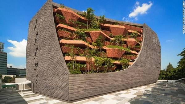 Bảo tàng lịch sử tự nhiên Lee Kong Chian cao 7 tầng, nhìn giống như một tảng đá khổng lồ phủ đầy rêu, bên trong có hơn một triệu mẫu vật.