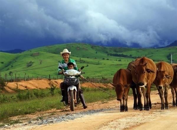 Không gian bình yên ở Xieng Khuang. Ảnh: cosianatour.com