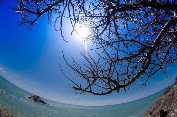 Vũng Tàu có nhiều bãi biển đẹp như bãi Trước, bãi Sau, bãi Giữa, bãi Thùy Dương, bãi Hồ Cốc, bãi Ô Quan, bãi Long Hải, bãi Dâu… để bạn bơi, chụp ảnh hay thưởng thức hải sản. Ảnh: Trung Nguyên.