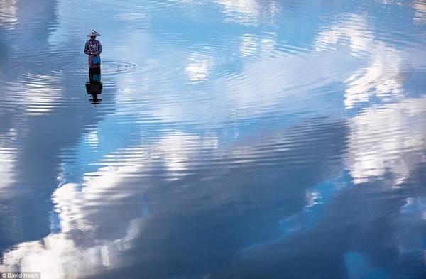Vượt qua cây cầu gỗ nổi tiếng ở Mandalay, David đã có cơ hội chụp được bức ảnh về người phụ nữ đánh cá trên hồ Taung Tha Man.