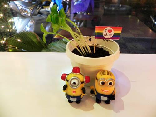 Hiện nay, quán bán kem chậu cây còn có chương trình mua kem tặng một minion dễ thương trong phim hoạt hình. Ảnh: Tường Ý