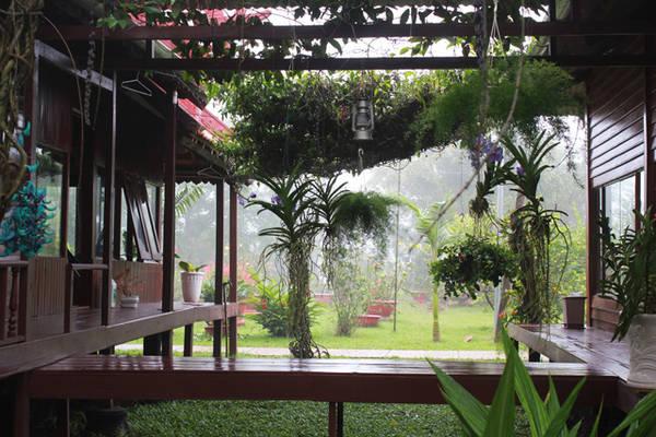 Nghỉ qua đêm tại chùa, bạn sẽ có thêm thời gian tận hưởng không khí yên tĩnh nơi đây.