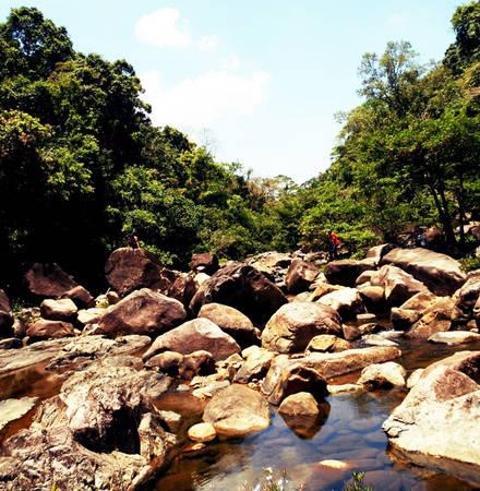 Cảnh đẹp nơi đây như một Hầm Hô khác của núi rừng Vĩnh An
