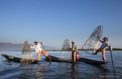 """Những """"nghệ sĩ"""" biểu diễn màn chèo thuyền bằng một chân trên hồ Inle. Ảnh: Lê Thế Thắng."""