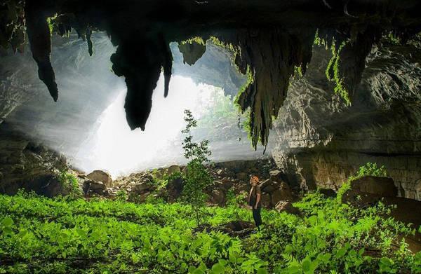 Hang được phát hiện lần đầu tiên vào năm 1905 bởi một nhóm nhà thám hiểm người Pháp.