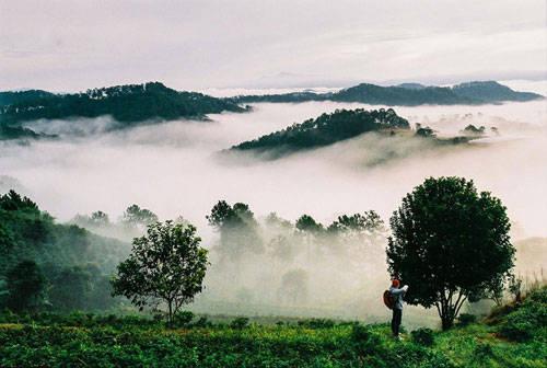 Trại Mát cũng là một cung đường lãng mạn để ngắm mây lơ lửng trên các đồi chè hoặc vườn rau trong trại. Bên cạnh mây, ngắm sương Đà Lạt cũng cho bạn những trải nghiệm khác lạ.