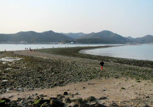 """<strong>Con đường giữa đảo Jindo và Modo (Hàn Quốc): </strong>""""Con đường đại dương"""" tại Hàn Quốc không nối liền đảo và đất liền, mà kết nối đảo Jindo và Modo. Mỗi năm hai lần vào khoảng tháng 3 và 6, khi mực nước thủy triều rút xuống cực đại, người Hàn Quốc cùng khách du lịch có thể dễ dàng đi lại giữa hai hòn đảo và nhìn ngắm cảnh đại dương mênh mông nhờ con đường dài khoảng 3 km. Tuy con đường chỉ hiện ra trong vòng một giờ nhưng cũng thu hút một lượng lớn khách du lịch, tạo nên khung cảnh nhộn nhịp giữa biển khơi rộng lớn. Ảnh: wordpress."""