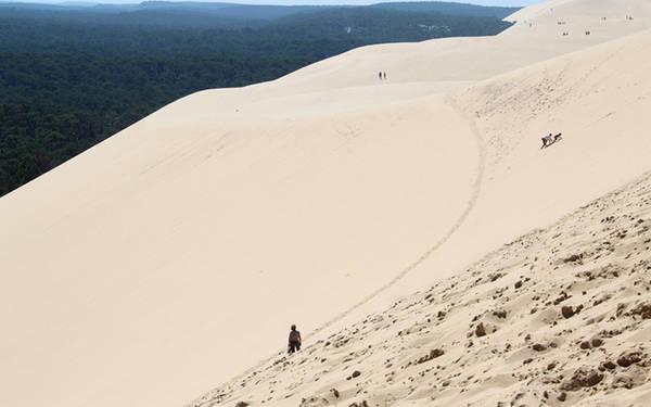 <strong>Đụn cát Pilat:</strong> Đây là đụn cát cao nhất châu Âu, cách Bordeaux 60 km. Nó có thể tích lên đến 60 triệu m<sup>3</sup>, rộng 500 m, dài 2,7 km và cao khoảng 110 m.