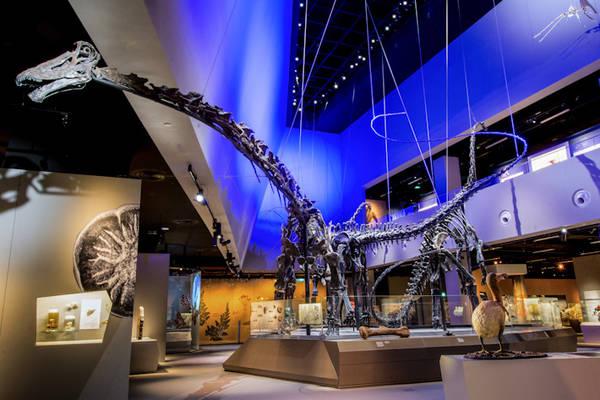 Những bảo tàng hấp dẫn tại Singapore