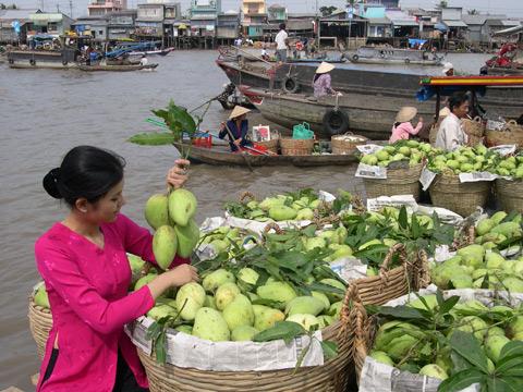 """Ấn tượng chợ nổi: Nơi đây nổi danh với hình ảnh nhiều loại trái cây đầy ắp trên các ghe, thuyền tại chợ nổi. Một khi đã chọn """"vương quốc trái cây"""" là điểm đến, khi trở về, bạn sẽ căng bụng với các đặc sản của nơi đây."""