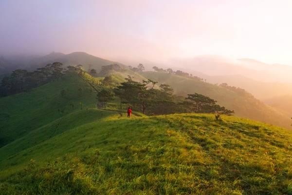 Khoảnh khắc dạo bước dưới những tia nắng vàng đầu tiên rải đều trên ngọn cỏ và từng làn sương mỏng bay lãng đãng bên sườn đồi khiến người đi như có cảm giác đang lạc vào thiên đường nơi hạ giới.