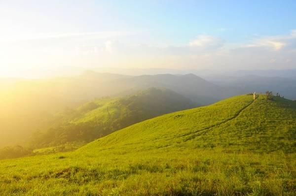 Một chút xanh xanh của cây cỏ, một chút vàng óng của những tia nắng mai xuyên qua màn sương mõng để ta có thể chạm tay vào cái thuần khiết của thiên nhiên.