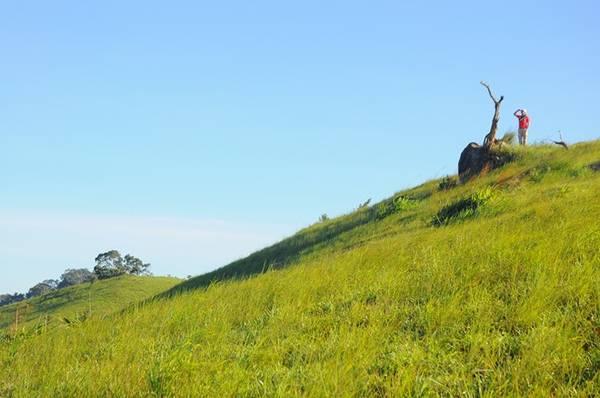 Khi đi cung Tà Năng - Phan Dũng, bạn có thể lên 3 ngọn đồi cao để ngắm nhìn hoàng hôn, bình minh hay những con đường mòn đất đỏ bazan như dải lụa uốn lượn giữa triền đồi.