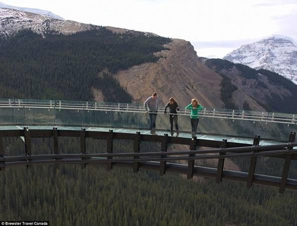 Du khách sẽ được chiêm ngưỡng toàn cảnh sông băng, những dãy núi hùng vĩ và động vật hoang ở hẻm núi phía dưới.