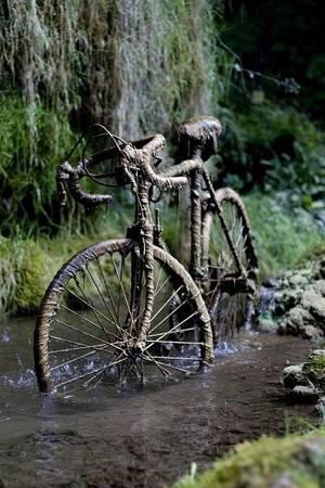 Chiếc xe đạp bị hóa đá trong hang Petrifying.