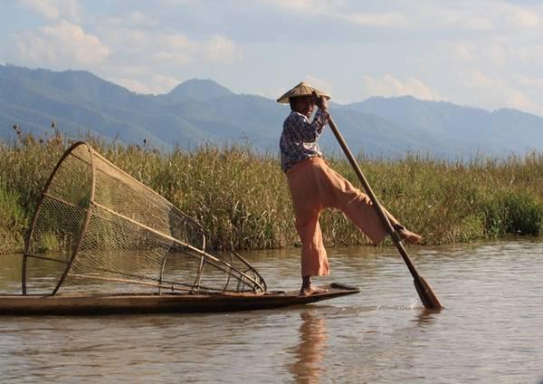 Chèo thuyền trên hồ.