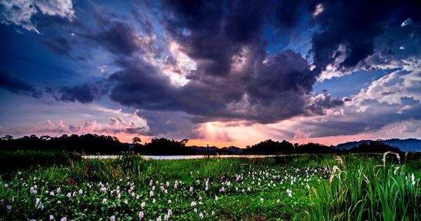 Mặt trời đang lặn dần, rọi xuống những tia nắng cuối cùng trên Bàu Sấu.