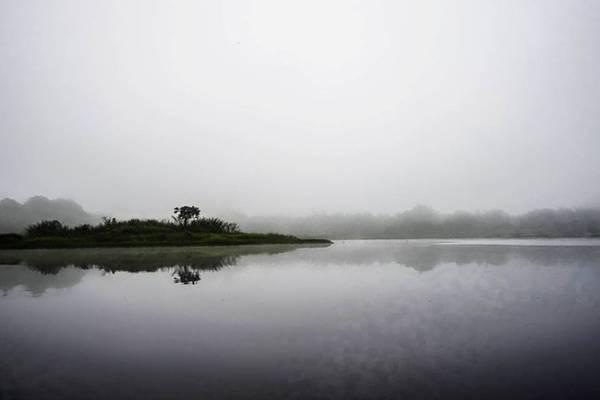 Buổi sáng mờ sương nhìn ra Cồn Dầu (có tên gọi này do hai cây dầu mọc trội lên trên khỏi hòn đảo nhỏ). Sương mù mờ mịt cho chúng tôi cảm giác như đang ở một chốn bồng lai tĩnh lặng.