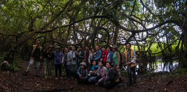 Các thành viên CLB Nhiếp ảnh & Du lịch chụp ảnh lưu niệm bên cây si 300 tuổi, thân mọc chằng chịt, cách khu trung tâm điều hành 16 km đường rừng. Đây là nơi xa nhất du khách được phép tham quan.