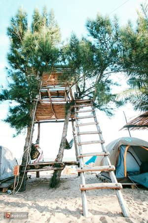 Đây chính là ngôi nhà trên cây được rất nhiều người thích vì là điểm có góc nhìn đẹp nhất trên bãi biển.