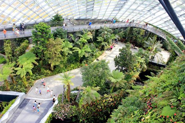 Khu vườn nhiệt đới trong nhà kính (Cloud Forest) nằm trong khu Gardens by the bay. Để đến điểm này bạn sẽ dừng ở trạm CE1 – Bayfront hoặc CE2 – Marina Bay.