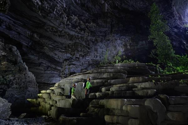 Điểm ấn tượng ở hang Tiên chính là những bậc thềm thạch nhũ ngay ở cửa hang. Nhờ ánh sáng ngoài trời có thể chiếu rọi vào bên trong nên thực vật ở đây phát triển khá tốt, tạo thành bức tranh thiên nhiên hùng vĩ.
