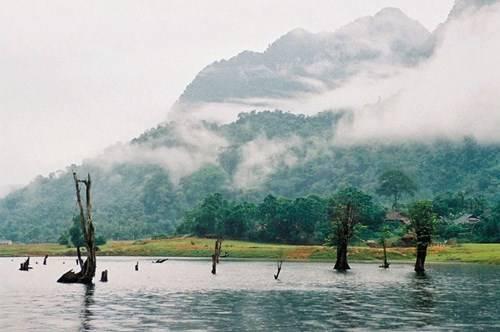 Hồ Noong nổi tiếng với khu rừng nổi lọt top những 'tiên cảnh' trên mặt hồ của Việt Nam