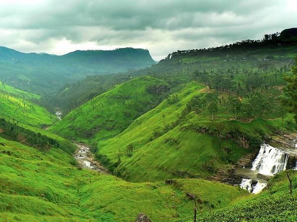 Là nhà sản xuất chè lớn thứ tư trên thế giới, Sri Lanka sở hữu vô số các đồn điền chè rộng lớn. Ảnh: Globalgrasshopper.com