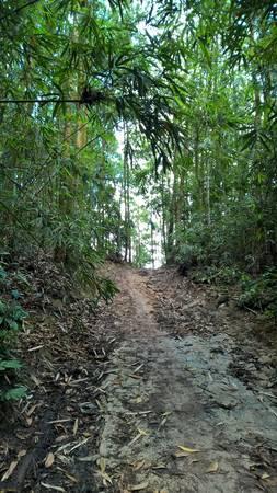 500m cuối vào chùa, đường dốc đứng và trơn trượt, phải đi bộ xuống.