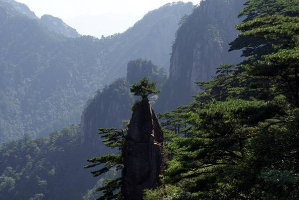 """Nói tới """"Mộng Bút Sinh Hoa"""", đây là một cây cột đá cao ngất trời dựng đứng từ thung lũng sâu, bộ phần dựng đứng ở phần dưới cây cột đá hình tròn và thon thon, giống hệt cán bút, phần trên hình chóp, giống như ngòi bút lông, một cây tùng cổ với bóng cây xanh sinh trưởng trên cột đá, như một bông hoa nở trên ngòi bút lông. Vì vậy mọi người gọi cột đá này là """" Mộng Bút Sinh Hoa"""" và coi là một trong những nét đẹp của Hoàng Sơn. Ảnh: Sohu"""