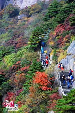 Du khách có thể đi thăm Hoàng Sơn theo lộ trình Hồ Thái Bình – khu nghỉ dưỡng Hoàng Sơn đông – khu danh thắng Hoàng Sơn – suối nước nóng Zui – đường cổ Tunxi. Ảnh: Zhongguo Wang