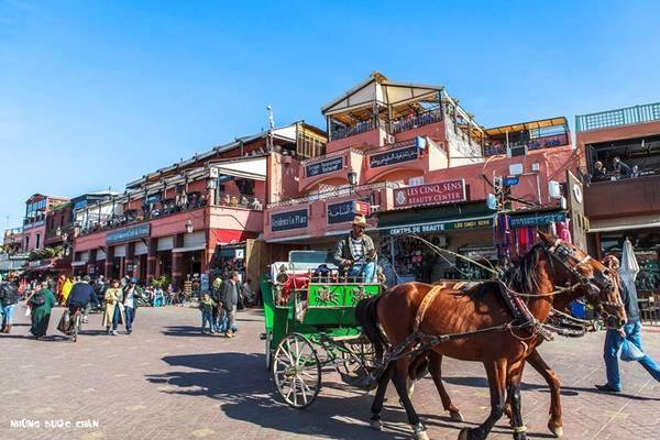 Quảng trường Jemaa el Fna trước khu vực phổ cổ Marrakech, du khách có cơ hội được gặp những người kể chuyện rong, dụ rắn, những chiếc xe ngựa lọc cọc chở khách, những xe đẩy độc đáo bán nước cam tươi, những món ăn truyền thống bày bán ê hề trong các khu chợ và những hàng hóa từ quần áo, thuộc da, hương liệu, thực phẩm, trang sức, mỹ nghệ, thảm, đèn treo… khắp các khu phố cổ theo kiểu Trung Đông đầy màu sắc huyền bí.