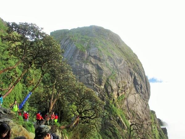 """Description: Hành trình leo Fansipan nếu ai đó bỏ qua những phút giây dừng lại vãn cảnh, cái vẻ đẹp quyện hòa giữa núi lớn, cây rừng và mây trắng thì có lẽ nó chỉ là một cuộc """"hành xác""""."""