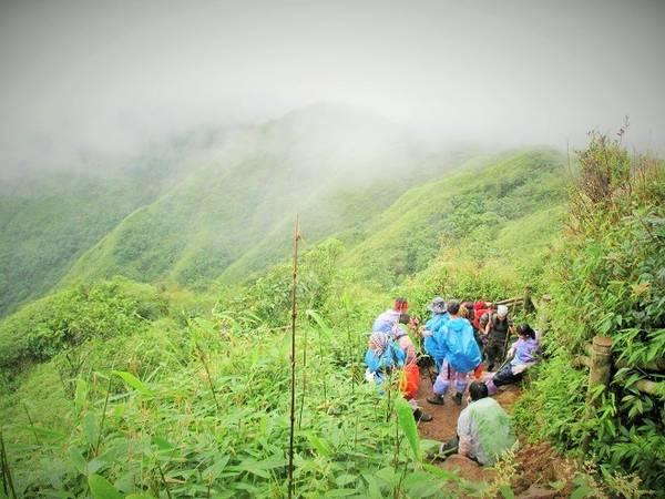 Description: Khi đi trong Vườn quốc gia Hoàng Liên, khách leo núi rất dễ gặp mưa vì thời tiết những ngày tháng 8 khá thất thường. Mưa xuống không chỉ làm cản trở tầm nhìn mà còn dễ khiến người leo núi buốt đầu và di chuyển khó khăn hơn nhiều.