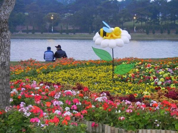 Đủ các sắc hoa rực rỡ được trồng dọc theo bờ Hồ Xuân Hương trong dịp Festival Hoa. Ảnh: caytrongvatnuoi