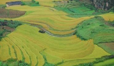 Ha-Giang-dep-nao-long-mua-lua-chin-ivivu-6