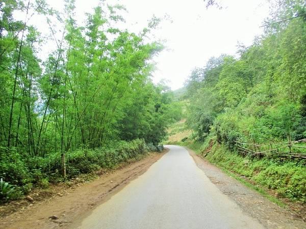 Nếu bạn có dịp tới Lào Cai, đừng bỏ lỡ cơ hội ghé thăm bản Tả Van - một bản làng mộng mơ cách trung tâm thị trấn Sa Pa chừng 11 km về hướng Đông Nam. Sau lưng du khách vẫn là chốn huyên náo, phồn hoa của thị trấn Sa Pa nhưng trước mặt là đường tới bản Tả Van với khoảng không bình dị lạ thường.